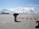 Kim Beisner collecting surface sediment samples for selenium leaching tests on the south shore of the Great Salt Lake